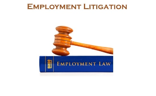 Employment Litigation
